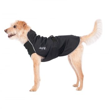 Chilly Dogs - Harbour Slicker - Waterdichte hondenjas - Smalle hondenrassen (windhonden ea)-0